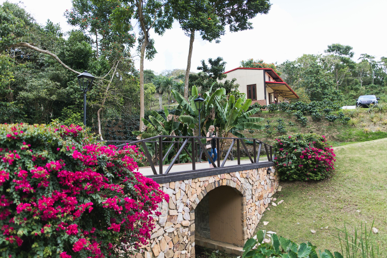 puerto-rico-hacienda-munoz-landscape